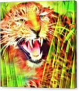 Aggressivity Canvas Print