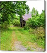 Aging Barn In Woods Canvas Print