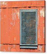 Aging Contrasts Canvas Print