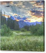 Agnew's Sunset Canvas Print