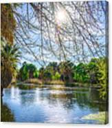 Agua Caliente Canvas Print