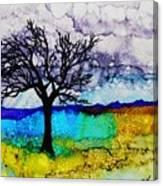 Changing Seasons - A 202 Canvas Print