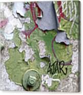 Ajar Canvas Print