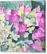 Ajisai Color-magenta Canvas Print