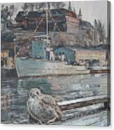 Akershus Seagull Canvas Print