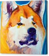 Akita - Apricot Canvas Print