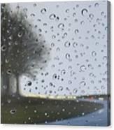 Alabama Rain Canvas Print