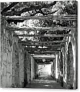 Alamo Corridor Canvas Print