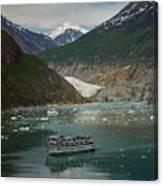 Alaska Endicott Glacier Canvas Print