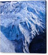 Alaska Exit Glacier Canvas Print