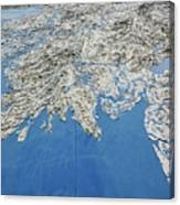 Alaska Map Wall Art Canvas Print