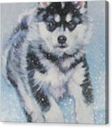 alaskan Malamute pup in snow Canvas Print