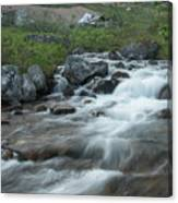 Alaskan Stream Canvas Print