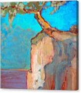 Albero Canvas Print