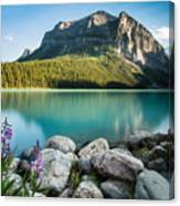 Alberta's Backyard Canvas Print