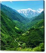 Alborz Green Canvas Print