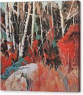 Alder Grove 3024 Canvas Print