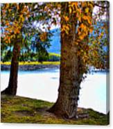 Alder Lake In The Fall Canvas Print