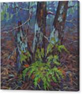 Alders With Ferns Canvas Print