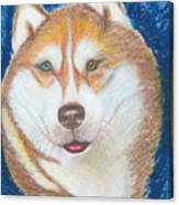 Alek The Siberian Husky Canvas Print