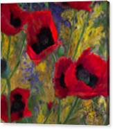 Alicias Poppies Canvas Print