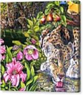 Alidas Garden Canvas Print