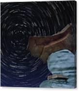 Alien Communication Canvas Print