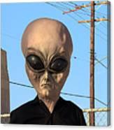Alien Face At 6th Street Bridge Canvas Print