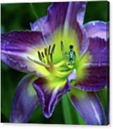 Alien On Flower Canvas Print