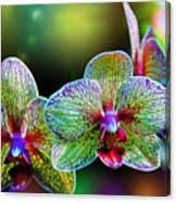 Alien Orchids Canvas Print