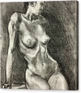 Alison Charcoal On Paper From Observation  Canvas Print