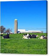 All Is Well In The Farmland Canvas Print