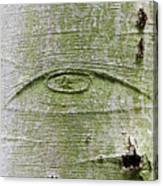 All-seeing Eye Of God On A Tree Bark Canvas Print