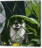 Alley Cat Canvas Print