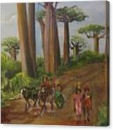 Alley Of The Baobabs Canvas Print