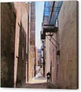 Alley W Guy Reading Canvas Print