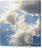 Alligator In Flight Canvas Print