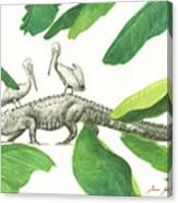 Alligator With Pelicans Canvas Print