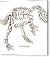 Allosaurus Skeleton Canvas Print