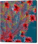 Almog-corall Tree Canvas Print