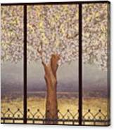 Almond Tree Canvas Print