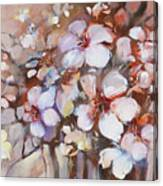 Almonds Blossom  2 Canvas Print