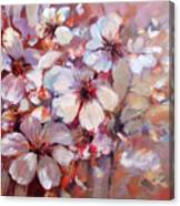 Almonds Blossom  6 Canvas Print