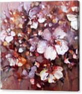 Almonds Blossom  7 Canvas Print