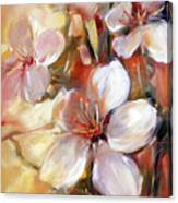 Almonds Blossom  9 Canvas Print