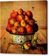 Almost A Still Life Canvas Print