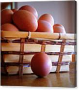 Almost All My Eggs In One Basket Canvas Print