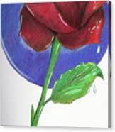 Almost Black Rose Canvas Print