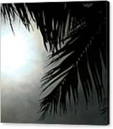 Aloha From The Garden Of Heaven  Canvas Print