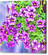 Aloha Purple Sky Calibrachoa Abstract II Canvas Print